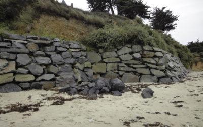 Dénaturation des falaises de la baie du Cabonnais : l'association fait venir un spécialiste
